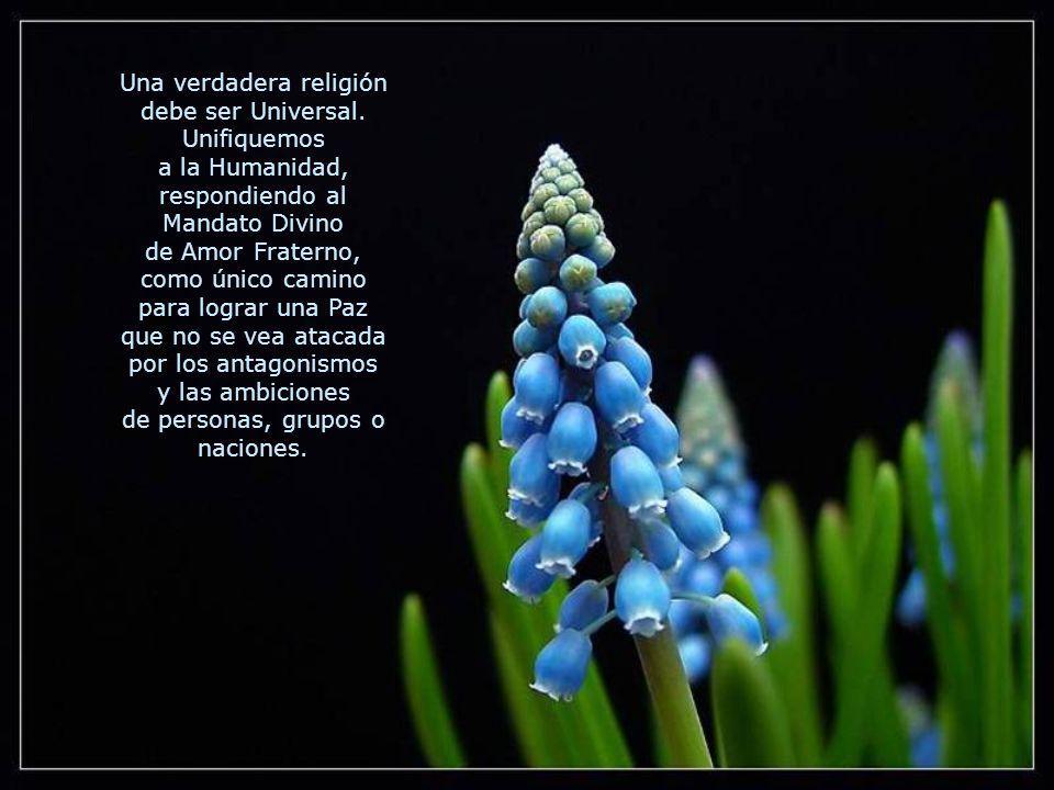 Entendemos por Religión el Camino que todo ser inteligente siente, íntimamente, que necesita seguir para tomar contacto con su Creador. La única final
