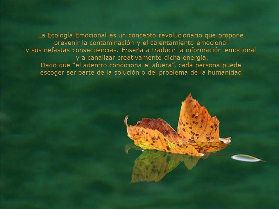 La Ecología Emocional es un concepto revolucionario que propone prevenir la contaminación y el calentamiento emocional y sus nefastas consecuencias.
