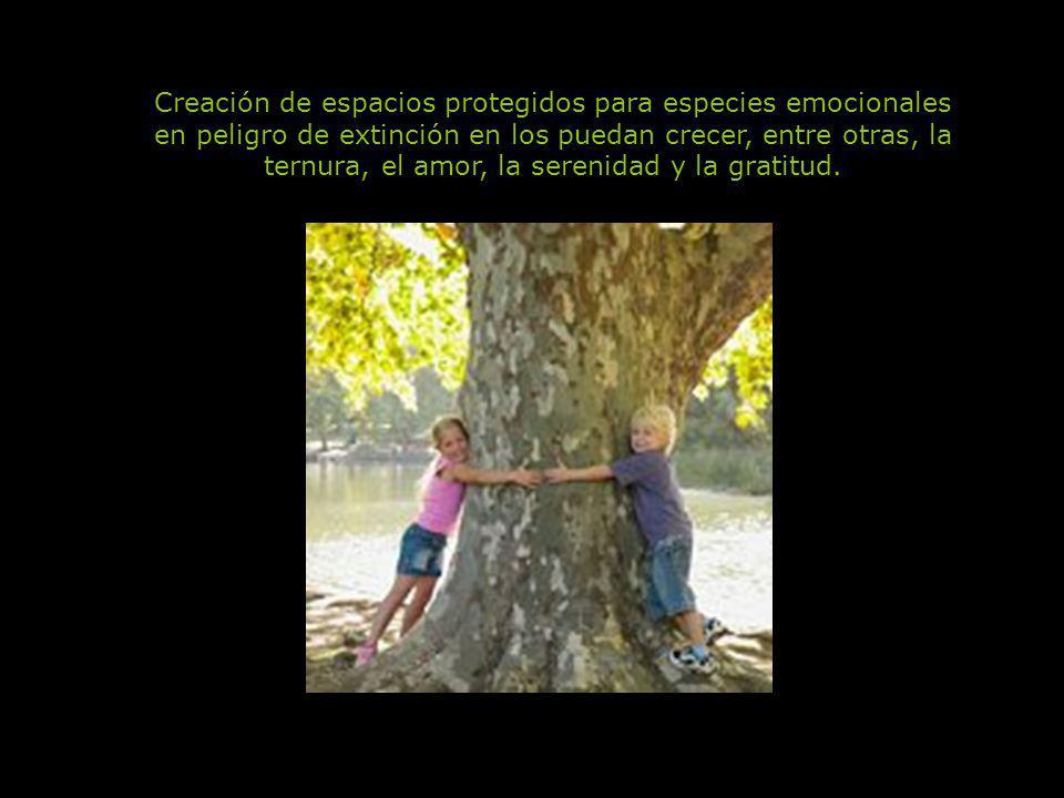 Uso de fuentes de energía emocional limpias, renovables y no contaminantes Movernos por el empuje de la alegría, la curiosidad, la confianza, la valen