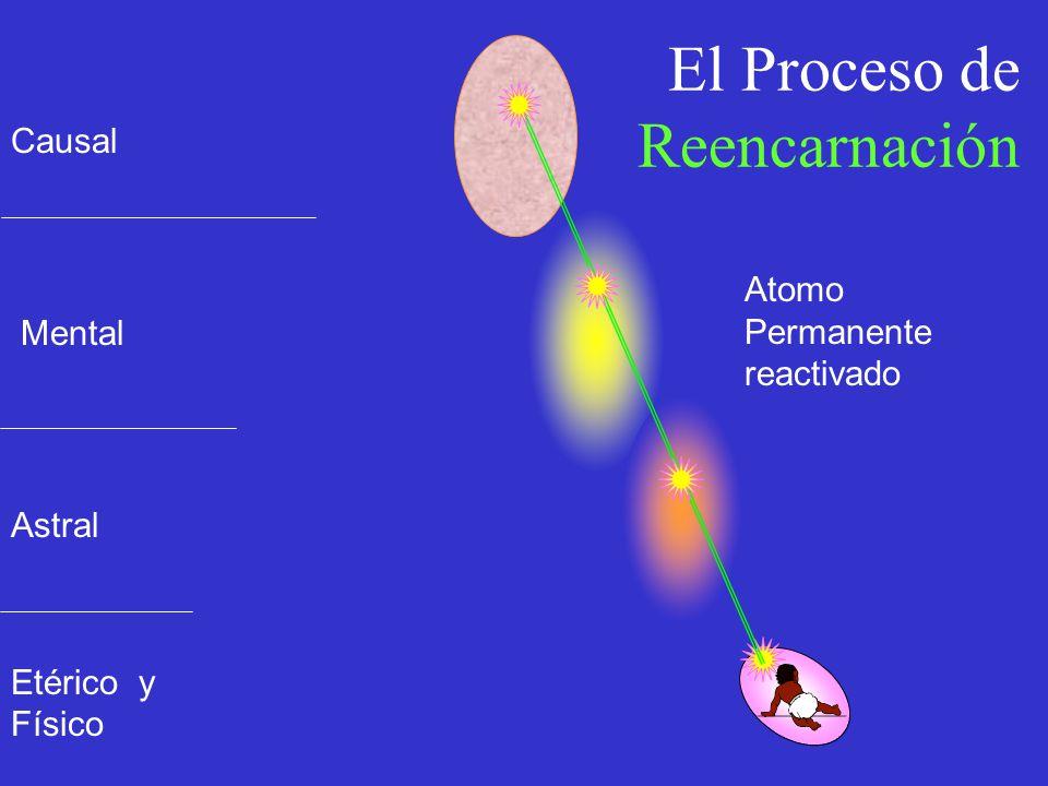 El Proceso de Reencarnación Etérico y Físico Astral Mental Causal Atomo Permanente reactivado