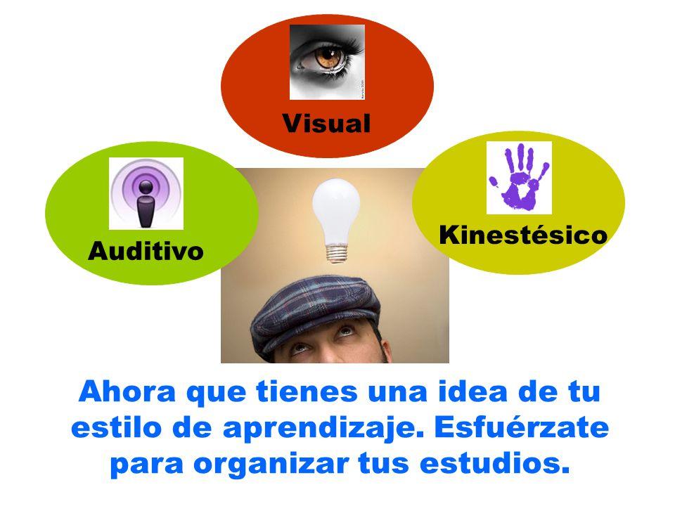 Ahora que tienes una idea de tu estilo de aprendizaje. Esfuérzate para organizar tus estudios. Auditivo Visual Kinestésico