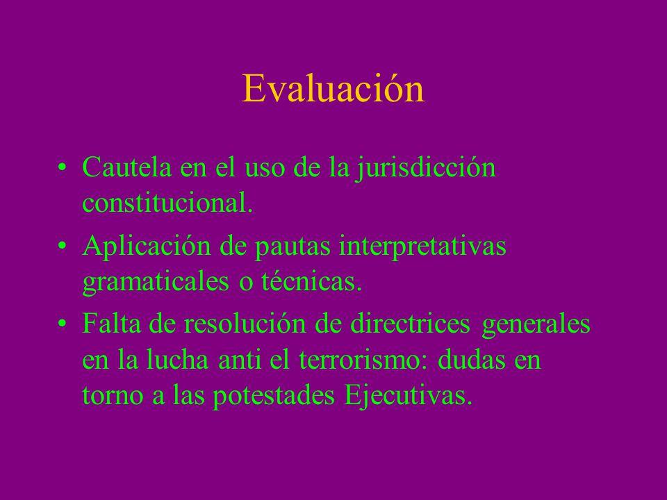 Evaluación Cautela en el uso de la jurisdicción constitucional. Aplicación de pautas interpretativas gramaticales o técnicas. Falta de resolución de d