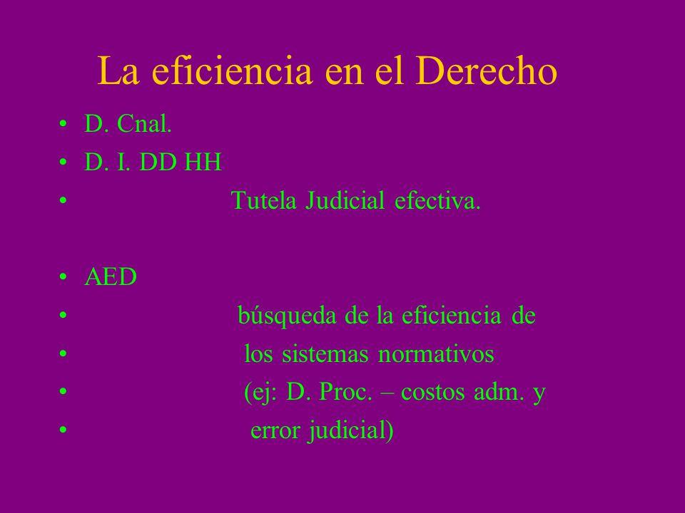La eficiencia en el Derecho D. Cnal. D. I. DD HH Tutela Judicial efectiva. AED búsqueda de la eficiencia de los sistemas normativos (ej: D. Proc. – co