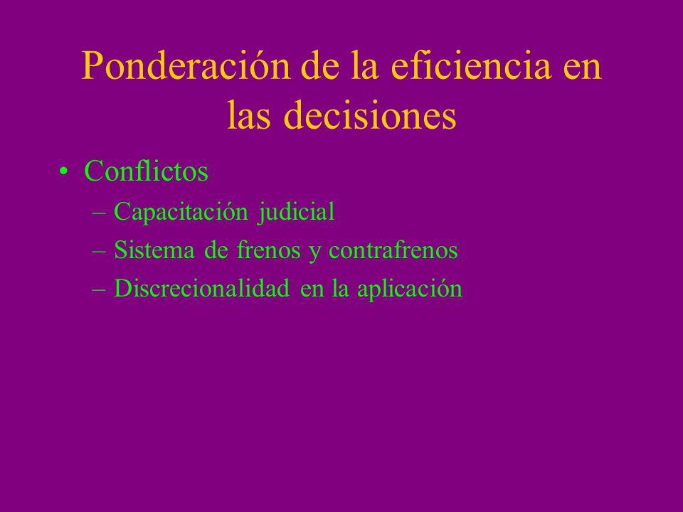 Ponderación de la eficiencia en las decisiones Conflictos –Capacitación judicial –Sistema de frenos y contrafrenos –Discrecionalidad en la aplicación