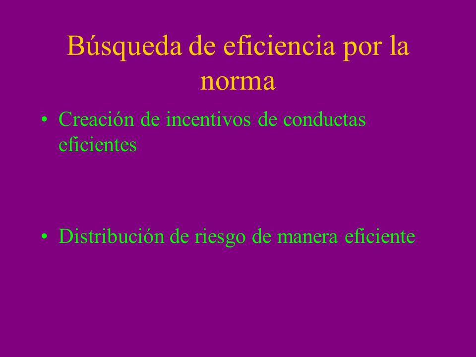 Búsqueda de eficiencia por la norma Creación de incentivos de conductas eficientes Distribución de riesgo de manera eficiente