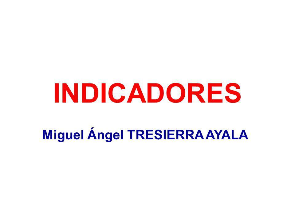 INDICADORES Miguel Ángel TRESIERRA AYALA