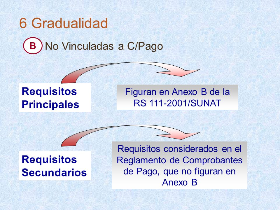 Figuran en Anexo B de la RS 111-2001/SUNAT Requisitos Principales Requisitos considerados en el Reglamento de Comprobantes de Pago, que no figuran en