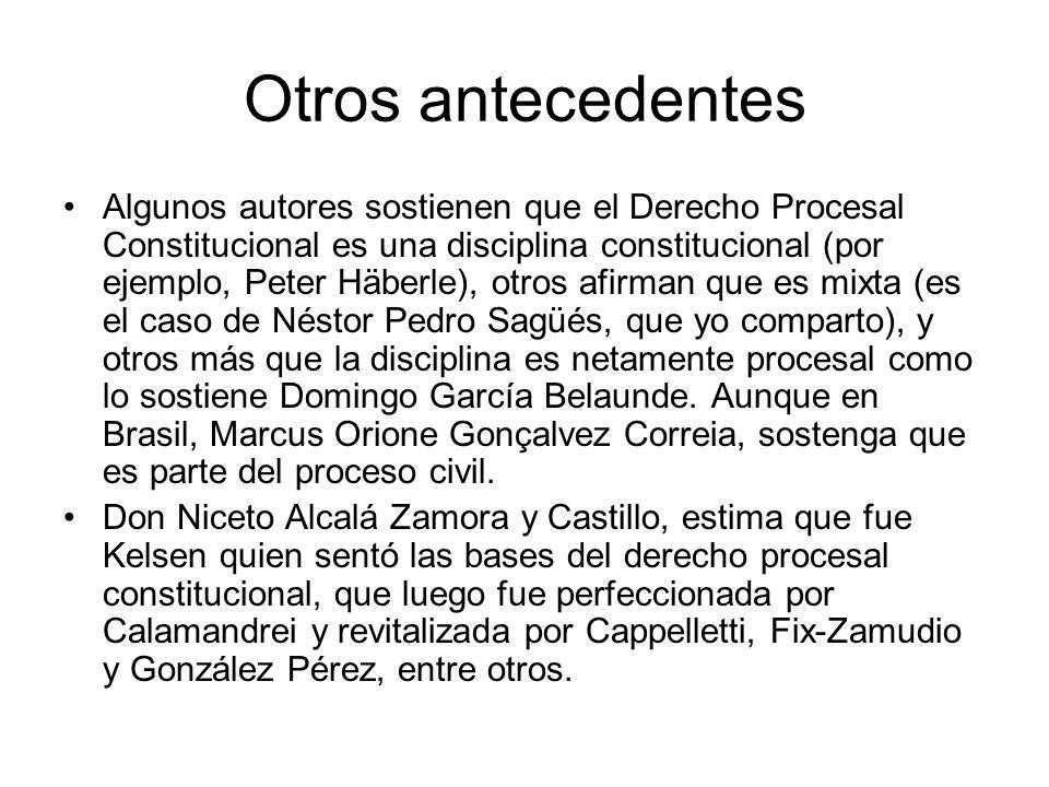 Otros antecedentes Algunos autores sostienen que el Derecho Procesal Constitucional es una disciplina constitucional (por ejemplo, Peter Häberle), otr