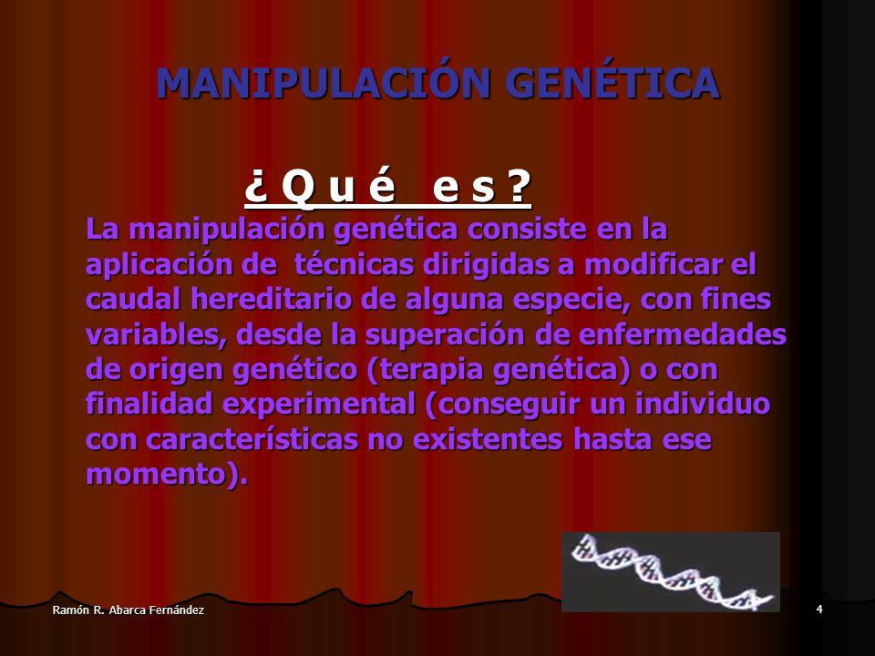 3 Ramón R. Abarca Fernández Metodología en bioética Metodología en investigación en Bioética (Sgreccia) Biología Ética Punto C Filosofía Punto B Signi