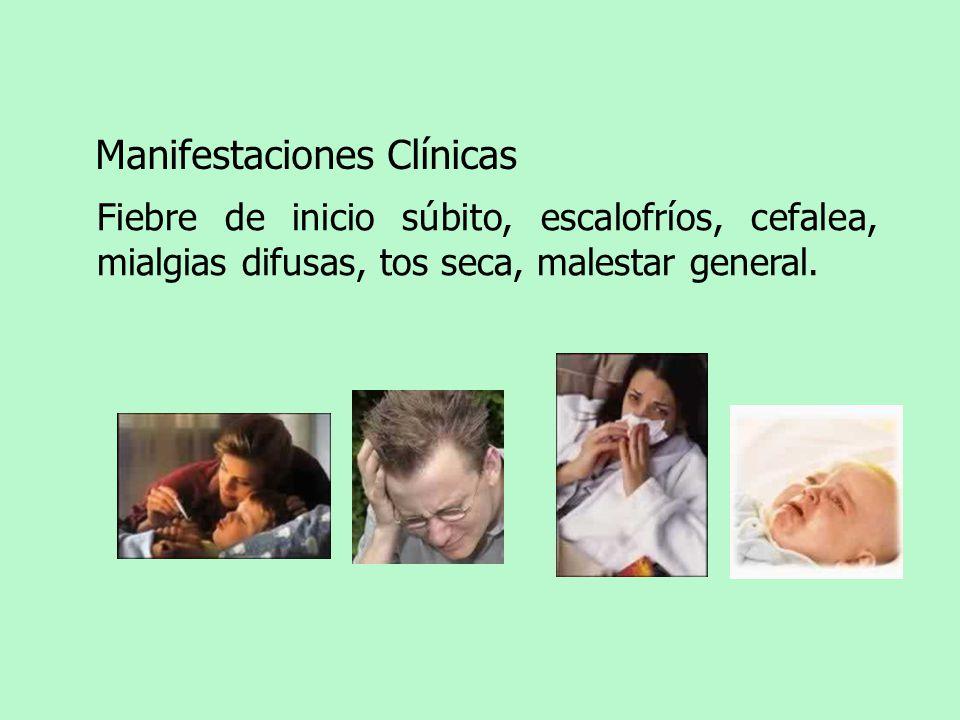 Manifestaciones Clínicas Fiebre de inicio súbito, escalofríos, cefalea, mialgias difusas, tos seca, malestar general.