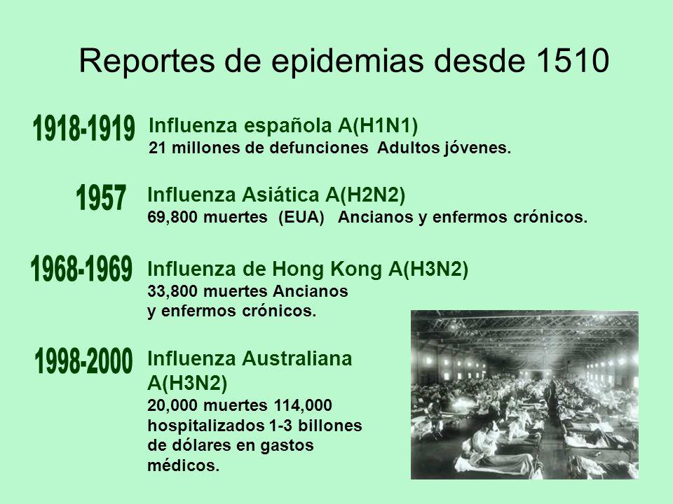 Reportes de epidemias desde 1510 Influenza española A(H1N1) 21 millones de defunciones Adultos jóvenes. Influenza de Hong Kong A(H3N2) 33,800 muertes