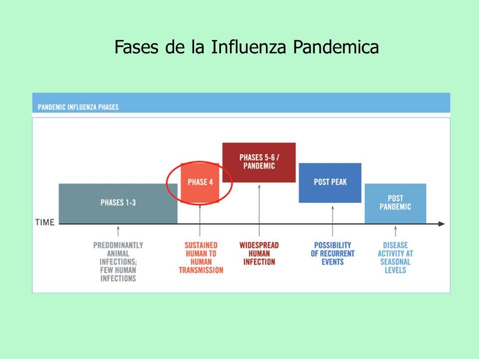 Fases de la Influenza Pandemica
