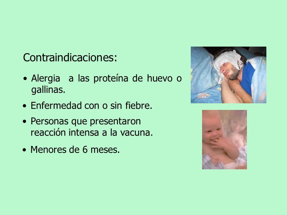 Contraindicaciones: Enfermedad con o sin fiebre. Personas que presentaron reacción intensa a la vacuna. Alergia a las proteína de huevo o gallinas. Me