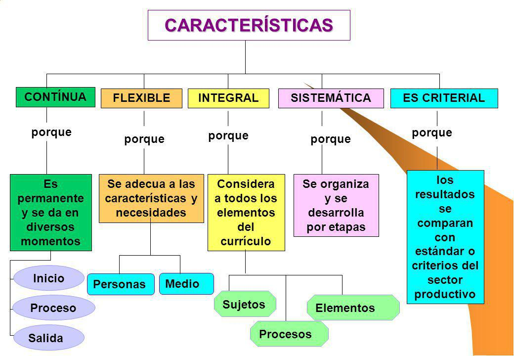 CARACTERÍSTICAS CONTÍNUA FLEXIBLEINTEGRALSISTEMÁTICAES CRITERIAL Es permanente y se da en diversos momentos Se adecua a las características y necesida