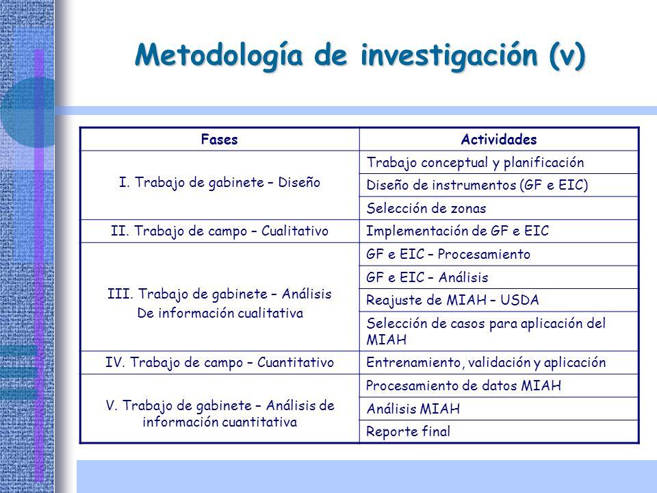 Metodología de investigación (v) FasesActividades I. Trabajo de gabinete – Diseño Trabajo conceptual y planificación Diseño de instrumentos (GF e EIC)