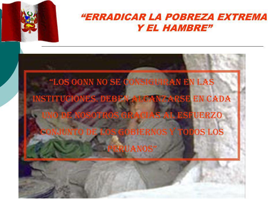 ERRADICAR LA POBREZA EXTREMA Y EL HAMBRE LOS OONN NO SE CONSIGUIRAN EN LAS INSTITUCIONES.