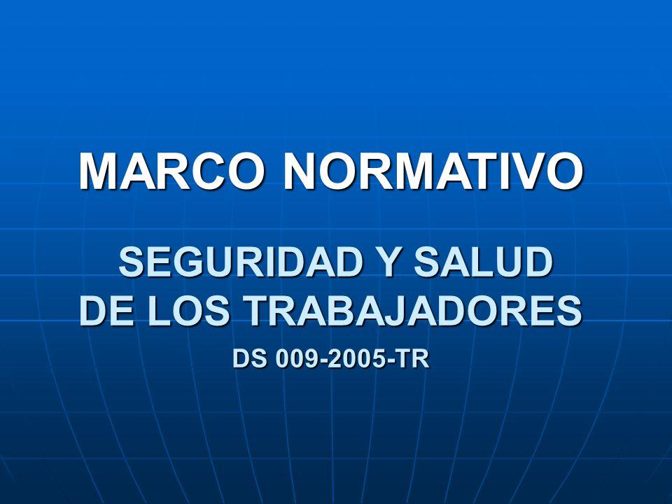 MARCO NORMATIVO SEGURIDAD Y SALUD DE LOS TRABAJADORES DS 009-2005-TR