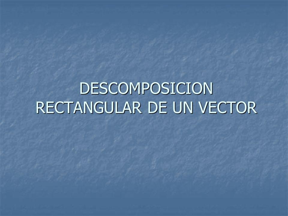DESCOMPOSICION RECTANGULAR DE UN VECTOR