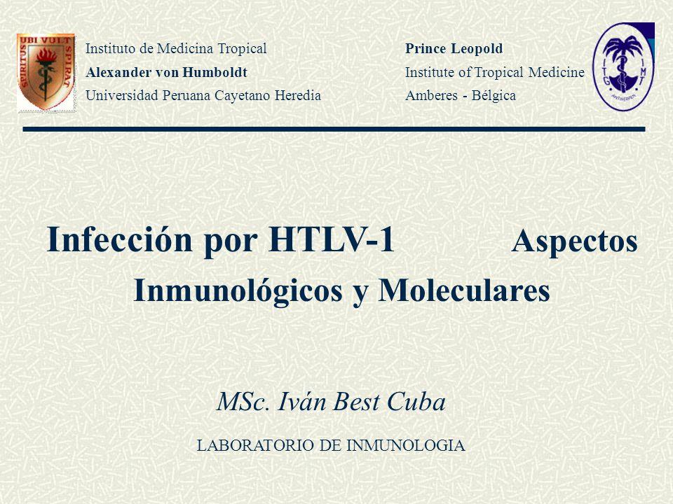 Infección por HTLV-1 Aspectos Inmunológicos y Moleculares Instituto de Medicina Tropical Alexander von Humboldt Universidad Peruana Cayetano Heredia P