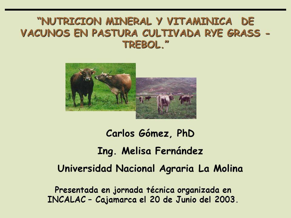 NUTRICION MINERAL Y VITAMINICA DE VACUNOS EN PASTURA CULTIVADA RYE GRASS - TREBOL. Carlos Gómez, PhD Ing. Melisa Fernández Universidad Nacional Agrari