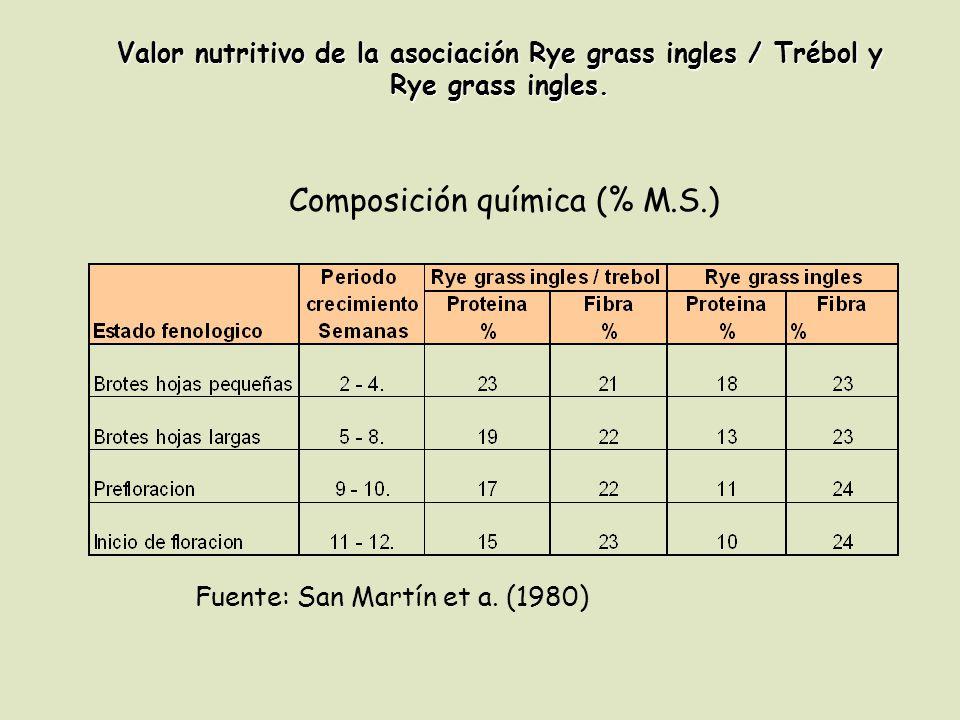 Valor nutritivo de la asociación Rye grass ingles / Trébol y Rye grass ingles. Composición química (% M.S.) Fuente: San Martín et a. (1980)