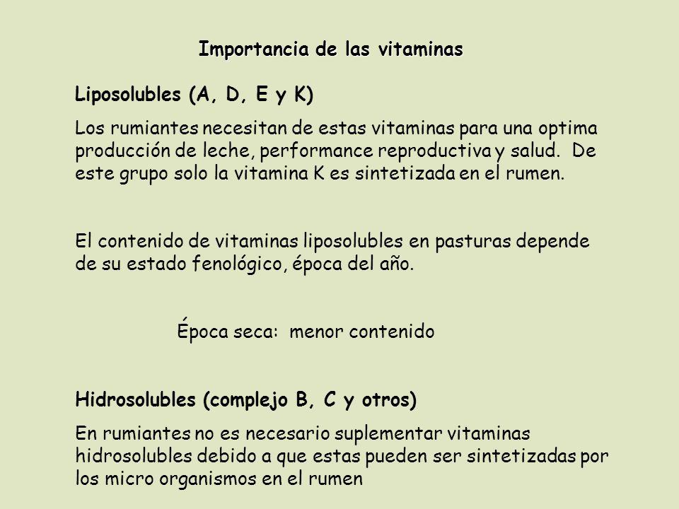 Importancia de las vitaminas Liposolubles (A, D, E y K) Los rumiantes necesitan de estas vitaminas para una optima producción de leche, performance re