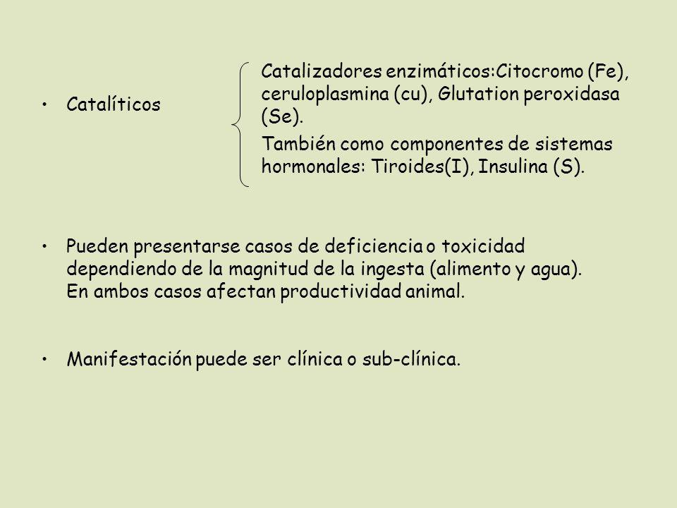 Catalíticos Pueden presentarse casos de deficiencia o toxicidad dependiendo de la magnitud de la ingesta (alimento y agua). En ambos casos afectan pro