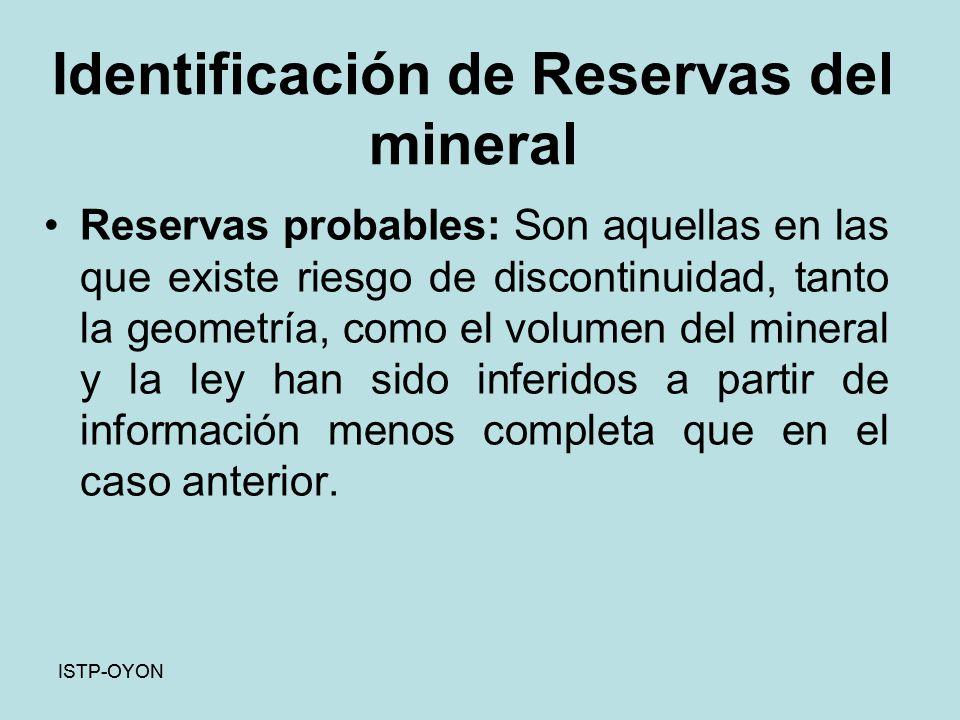 Identificación de Reservas del mineral Reservas probables: Son aquellas en las que existe riesgo de discontinuidad, tanto la geometría, como el volumen del mineral y la ley han sido inferidos a partir de información menos completa que en el caso anterior.