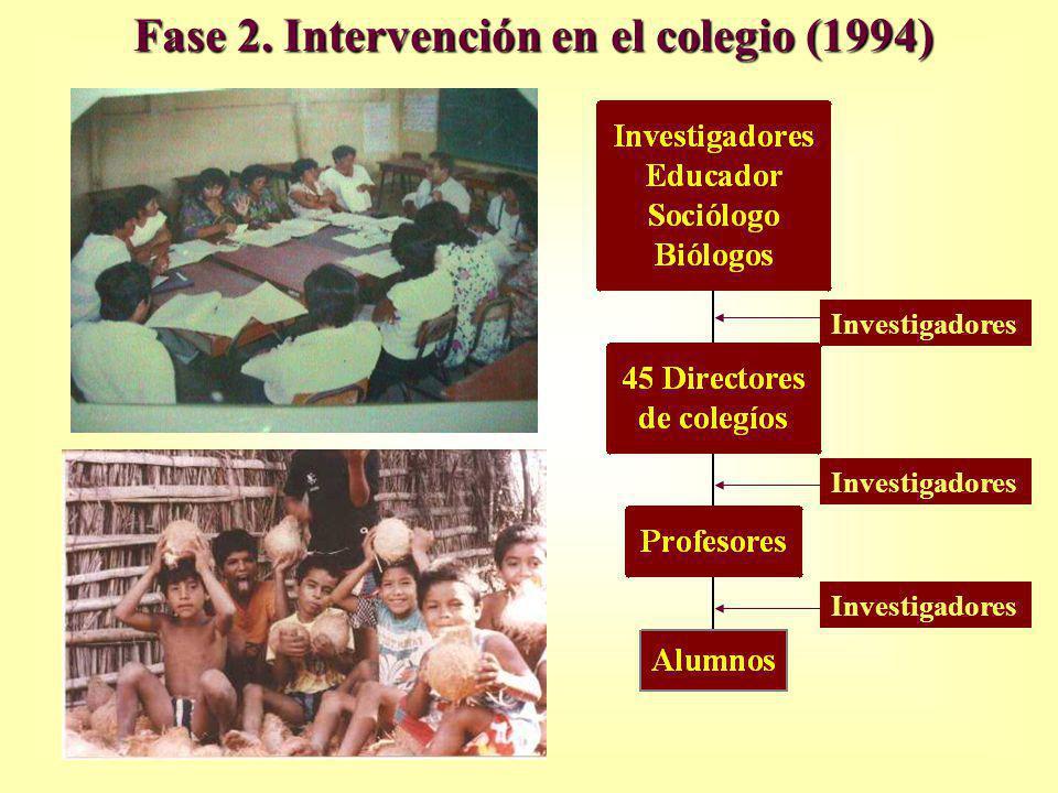 Fase 2. Intervención en el colegio (1994) Investigadores