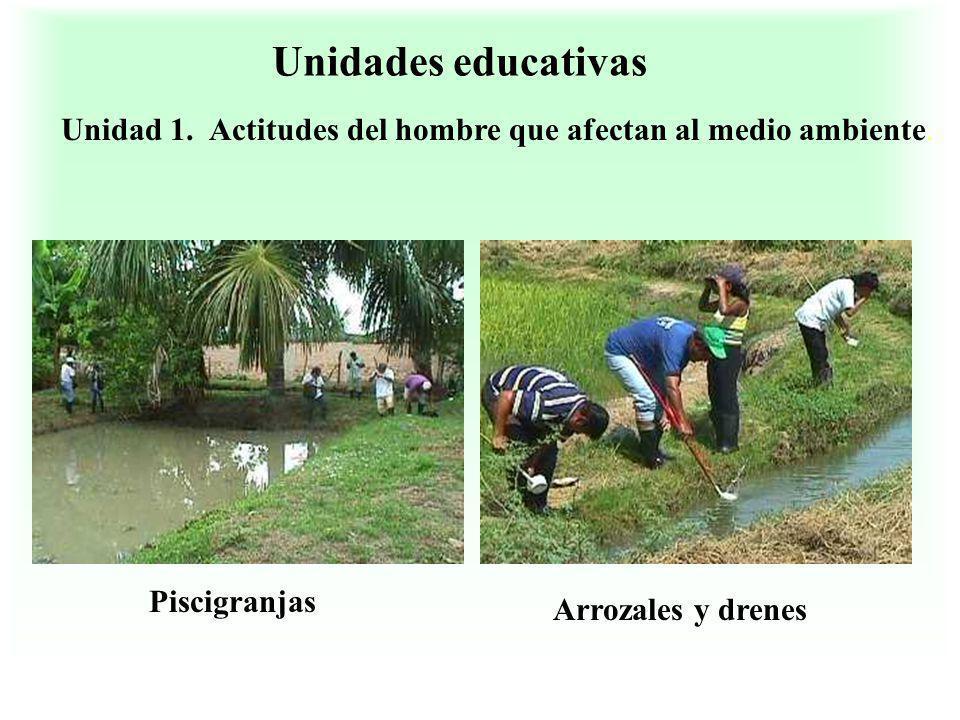 Unidades educativas Unidad 1. Actitudes del hombre que afectan al medio ambiente. Piscigranjas Arrozales y drenes