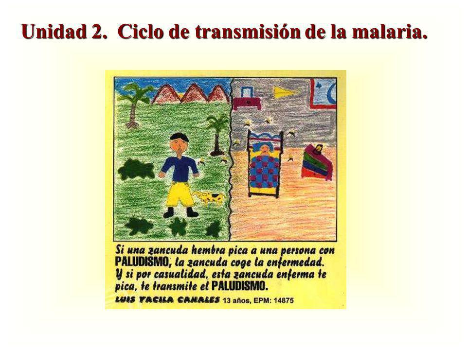 Unidad 2. Ciclo de transmisión de la malaria.