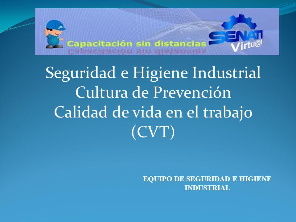 Seguridad e Higiene Industrial Cultura de Prevención Calidad de vida en el trabajo (CVT) EQUIPO DE SEGURIDAD E HIGIENE INDUSTRIAL