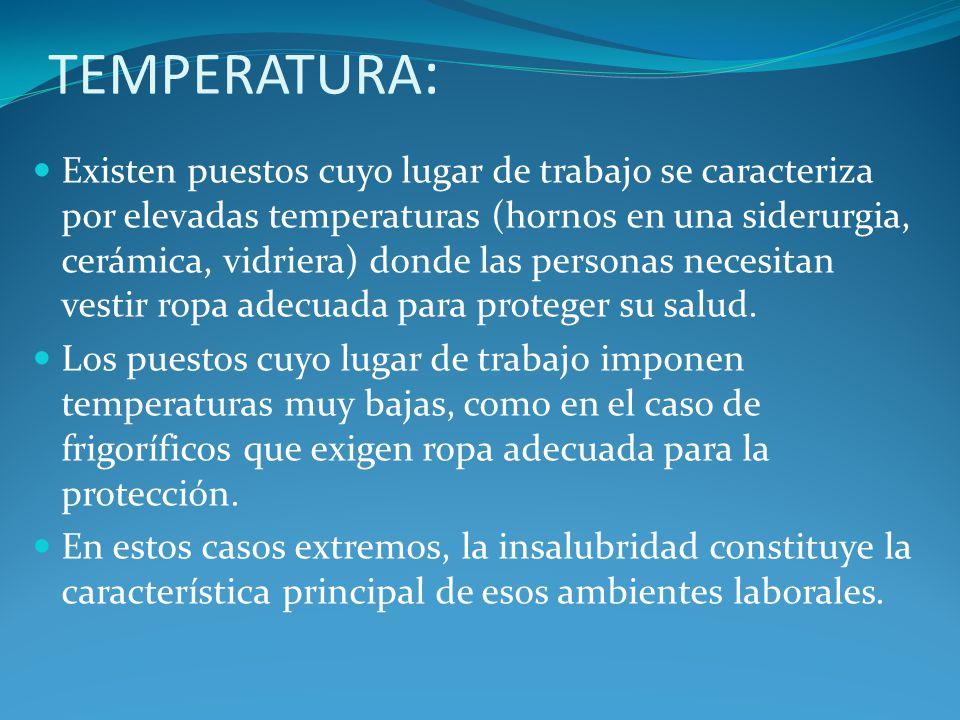 TEMPERATURA : Existen puestos cuyo lugar de trabajo se caracteriza por elevadas temperaturas (hornos en una siderurgia, cerámica, vidriera) donde las