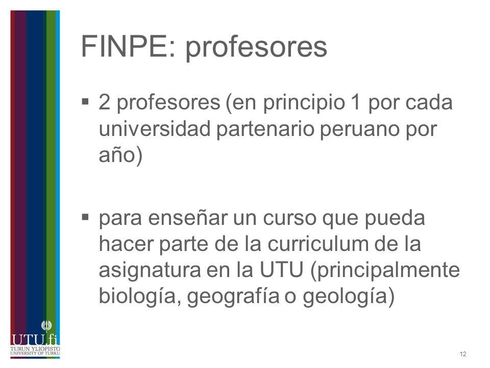 12 FINPE: profesores 2 profesores (en principio 1 por cada universidad partenario peruano por año) para enseñar un curso que pueda hacer parte de la c