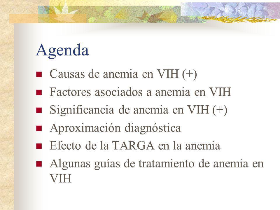 Agenda Causas de anemia en VIH (+) Factores asociados a anemia en VIH Significancia de anemia en VIH (+) Aproximación diagnóstica Efecto de la TARGA e