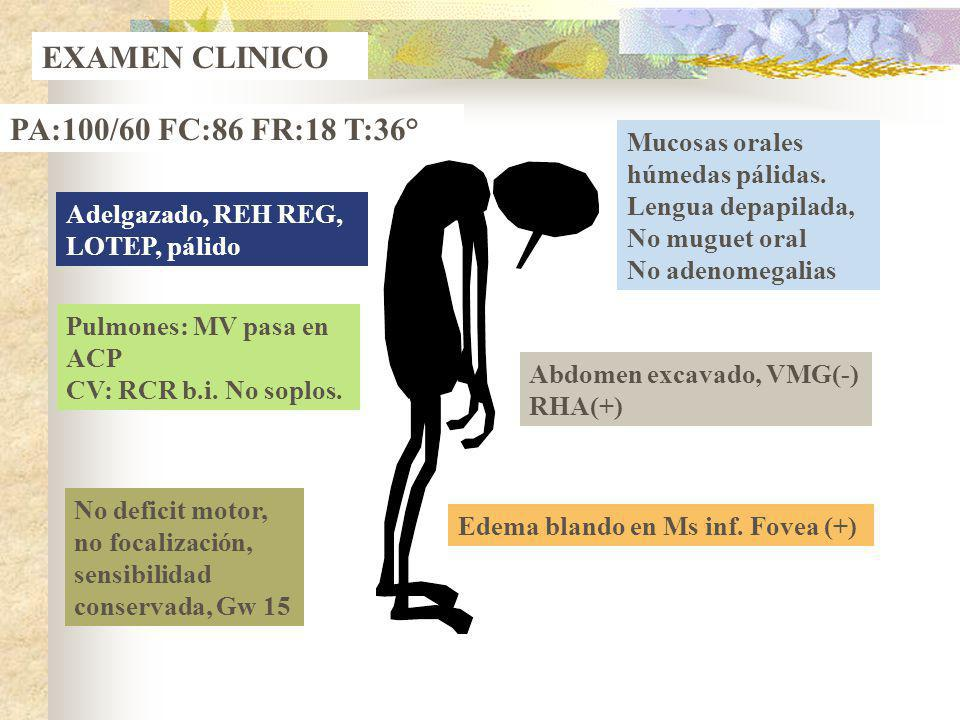 EXAMEN CLINICO PA:100/60 FC:86 FR:18 T:36° Adelgazado, REH REG, LOTEP, pálido Mucosas orales húmedas pálidas. Lengua depapilada, No muguet oral No ade