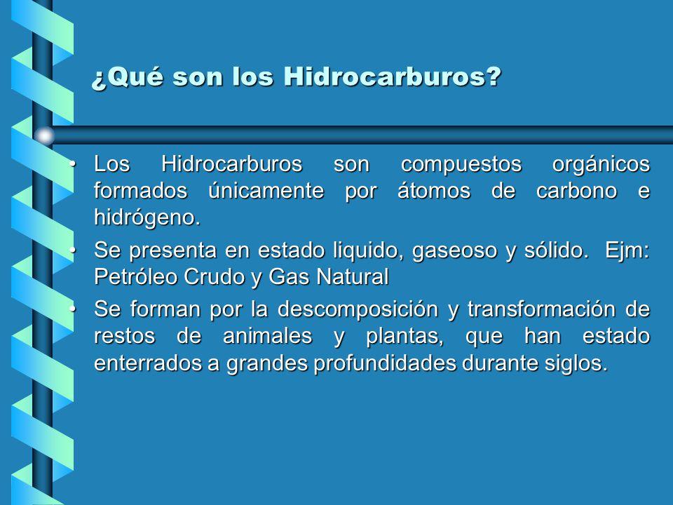 ¿Qué son los Hidrocarburos.