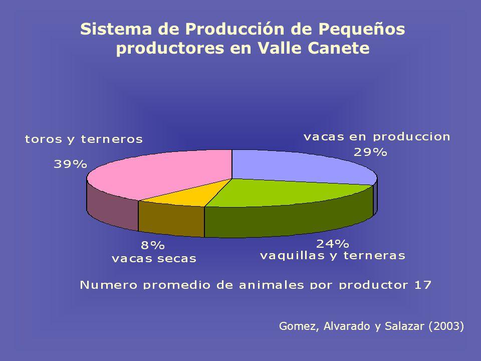 Sistema de Producción de Pequeños productores en Valle Canete Gomez, Alvarado y Salazar (2003)