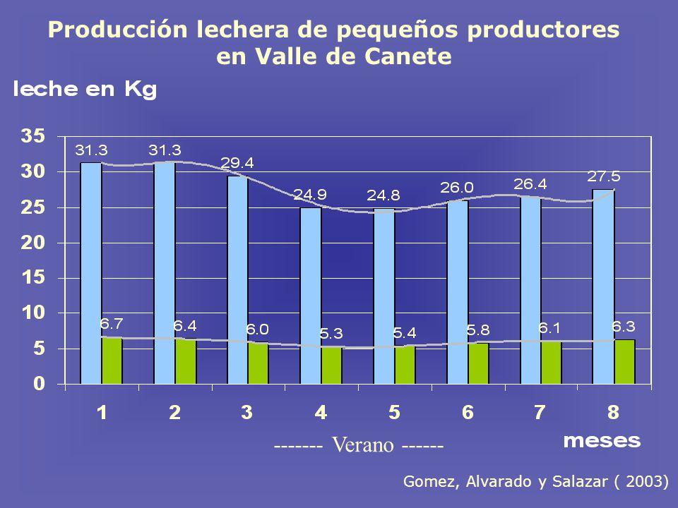 Producción lechera de pequeños productores en Valle de Canete ------- Verano ------