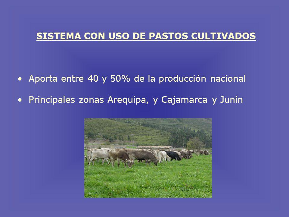 SISTEMA CON USO DE PASTOS CULTIVADOS Aporta entre 40 y 50% de la producción nacional Principales zonas Arequipa, y Cajamarca y Junín