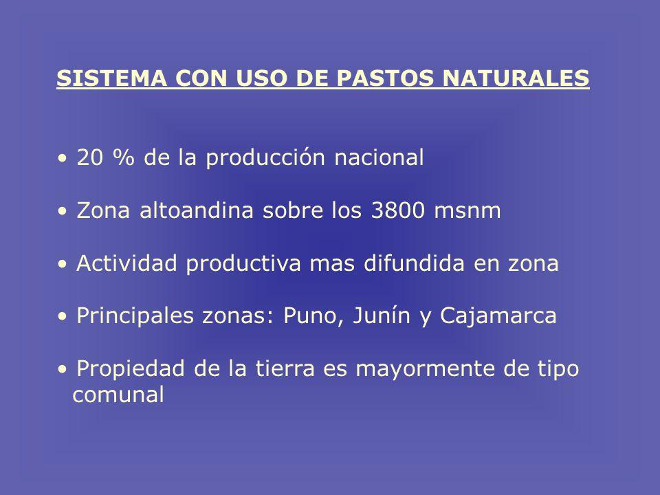 SISTEMA CON USO DE PASTOS NATURALES 20 % de la producción nacional Zona altoandina sobre los 3800 msnm Actividad productiva mas difundida en zona Principales zonas: Puno, Junín y Cajamarca Propiedad de la tierra es mayormente de tipo comunal