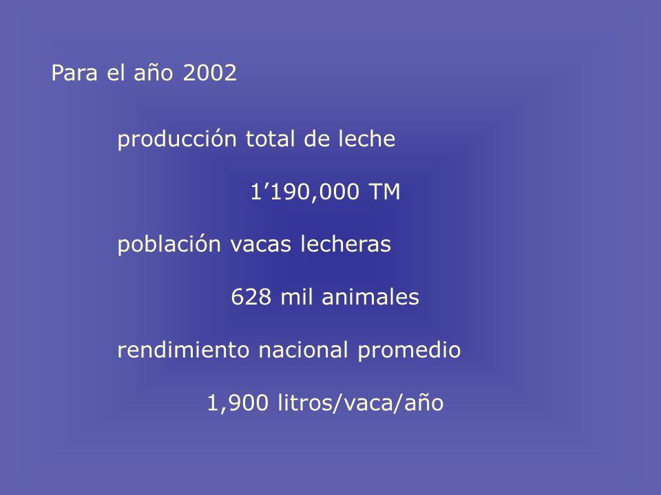 Para el año 2002 producción total de leche 1190,000 TM población vacas lecheras 628 mil animales rendimiento nacional promedio 1,900 litros/vaca/año