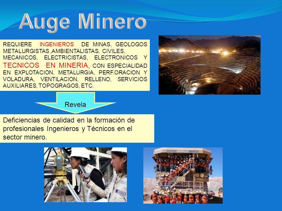 Revela Deficiencias de calidad en la formación de profesionales Ingenieros y Técnicos en el sector minero.