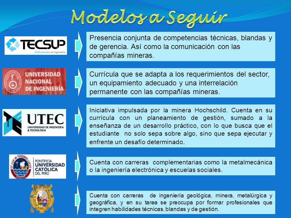 Presencia conjunta de competencias técnicas, blandas y de gerencia.