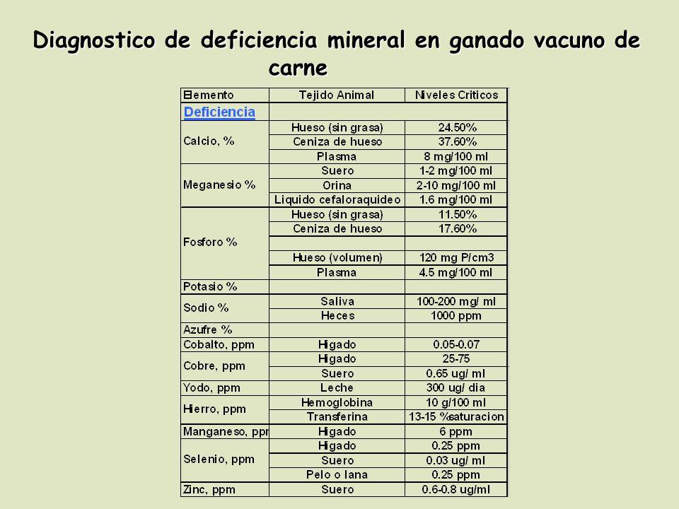 Diagnostico de deficiencia mineral en ganado vacuno de carne
