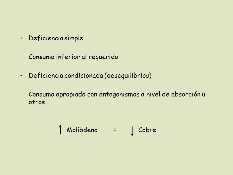 Deficiencia simple Consumo inferior al requerido Deficiencia condicionada (desequilibrios) Consumo apropiado con antagonismos a nivel de absorción u otros.