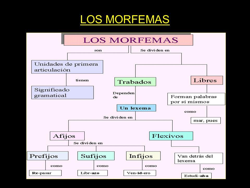 LOS MORFEMAS