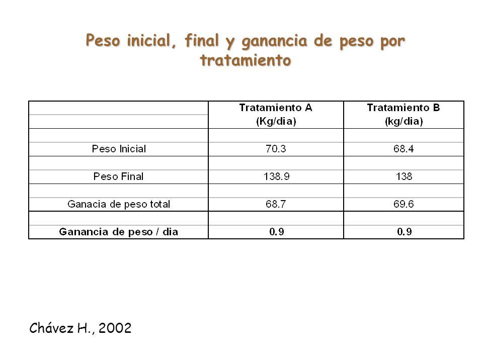 Chávez H., 2002