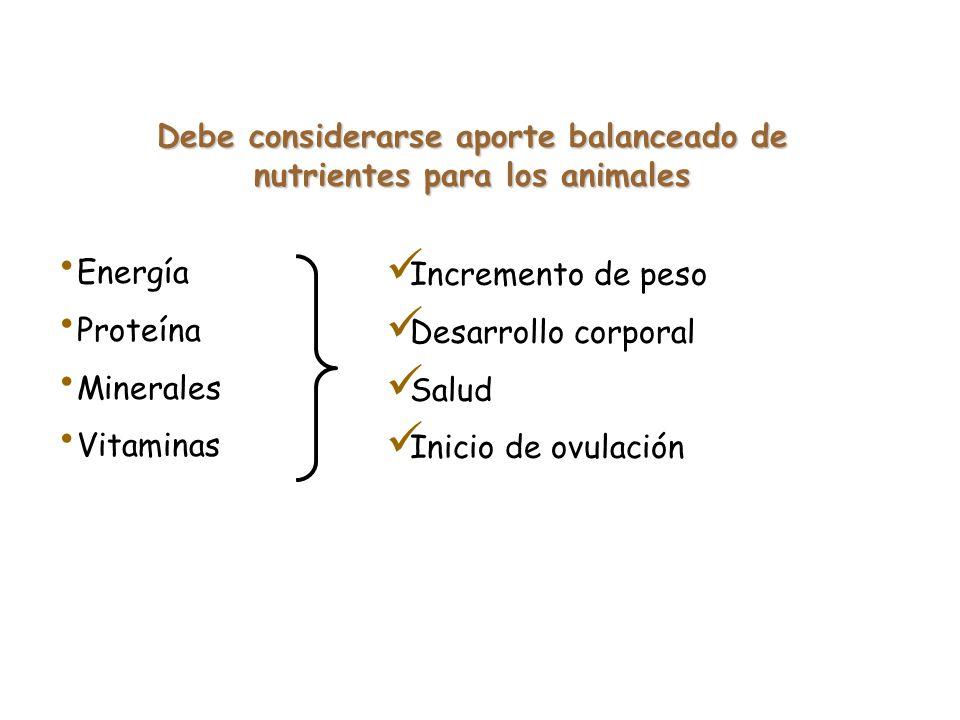 Ejemplo de costo de alimentación del Hato Vacas producción Vacas secas Animales recría S/. / díaS/. total Gasto de alimentación total 12.2 6.4 3.6 311