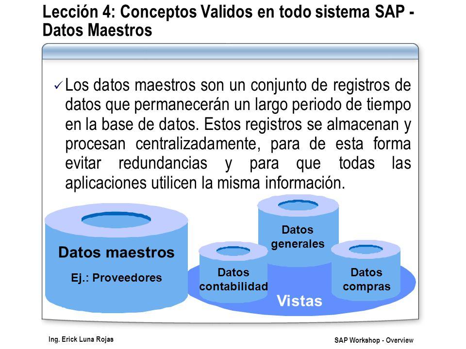 Ing. Erick Luna Rojas SAP Workshop - Overview Los datos maestros son un conjunto de registros de datos que permanecerán un largo periodo de tiempo en